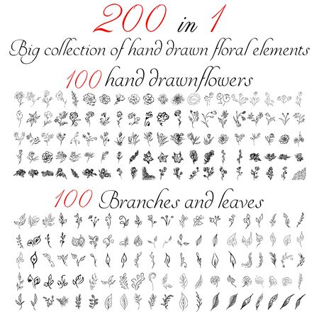 Huge outline collection of 200 hand-drawn floral elements. Big collection of 100 hand-drawn flowers and 100 brunches and leaves. Big floral botanical set isolated on a white background.