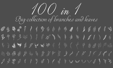 Big doodle collection of 100 hand-drawn branches and leaves. Big floral botanical leaves and brunches set isolated on a white background. Hand drawn vector collection. Spring blossom.
