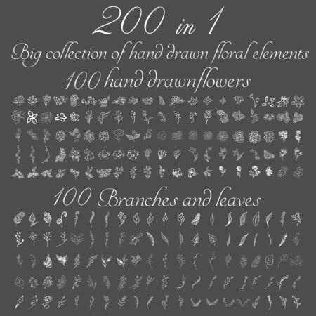 Huge doodle collection of 200 hand-drawn floral elements. Big collection of 100 hand-drawn flowers and 100 brunches and leaves. Big floral botanical set isolated on a white background. 向量圖像