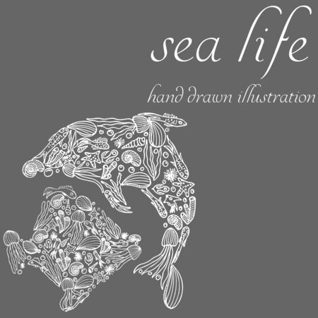 Set marine doodle silhouette in the form of fish and dolphin. Black set fish silhouette in freehand style. Seashell background. Doodle vector. Marine life collection. Swimming vector icon. 向量圖像
