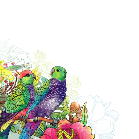 background parrot and flowers Archivio Fotografico