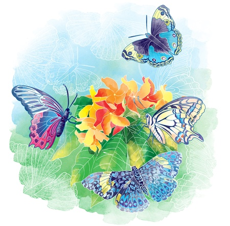 Spring butterflies and flowers