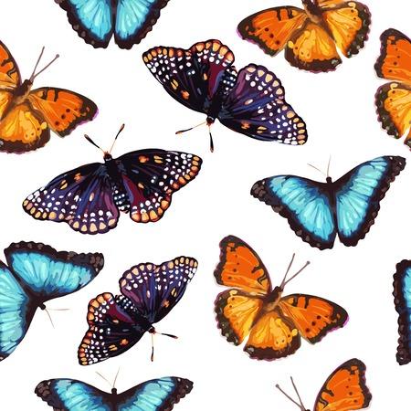 Pattern de nature papillon tropical Banque d'images - 29392577