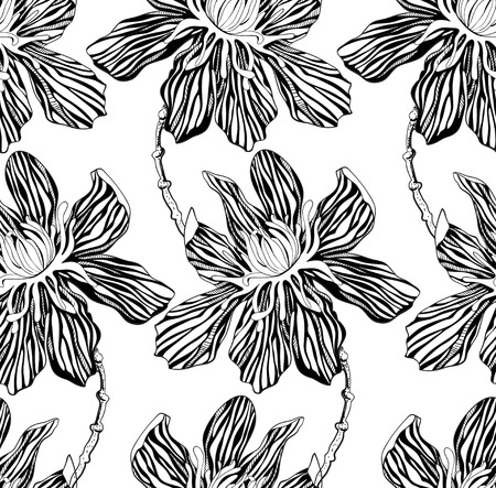 zebra print: seamless pattern decorative graphic flowers on a white background Illustration
