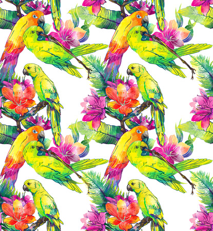 parrot flying: The yellow parrots and exotic flowers on a white background