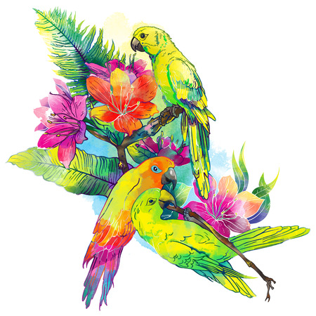 The yellow parrots and exotic flowers on a white background