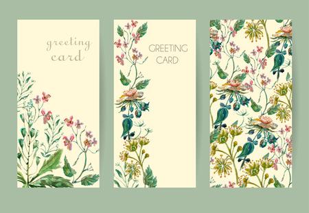 dessin: Vector floral seamless. Motif floral color� avec des fleurs sauvages sur un fond blanc, dessin aquarelle