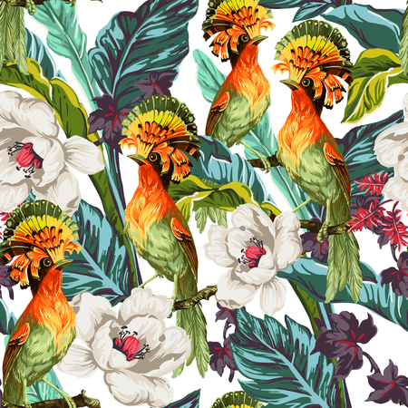ave del paraiso: Patrón sin fisuras con las aves del paraíso y flores exóticas Vectores