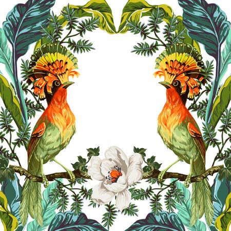 흰색 배경에 파라다이스와 이국적인 꽃의 새 일러스트