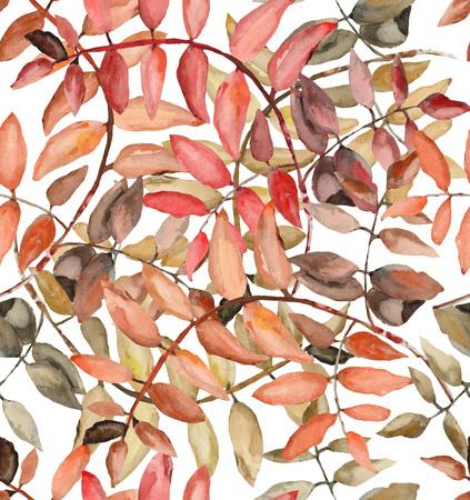 seamless pattern of rowan leaves in watercolor