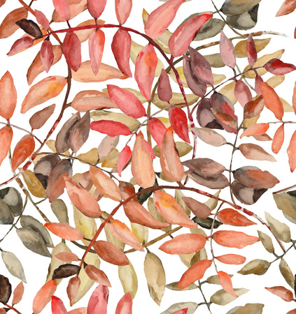 seamless pattern of rowan leaves in watercolor