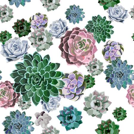 흰색 배경에 즙이 많은 식물의 원활한 패턴입니다. 손으로 그리는 패턴입니다. 일러스트
