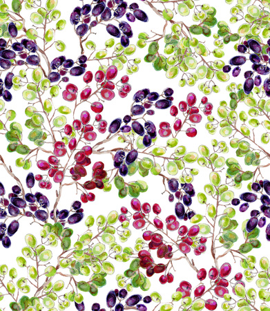 Watercolor branches of grapes on a white background.