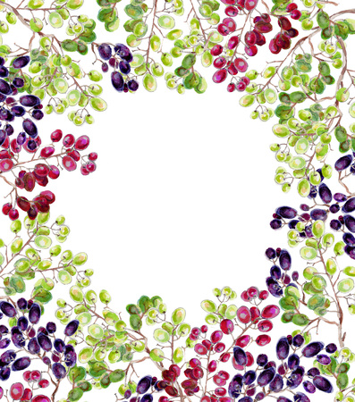 Frame of grape watercolor. Bunches of grapes on a white background.