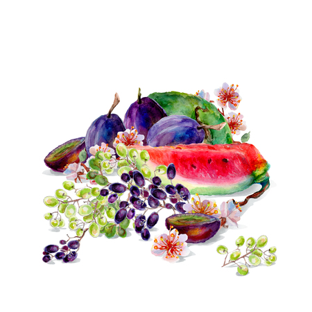 Isolated watercolor mixed fruit on a white background.
