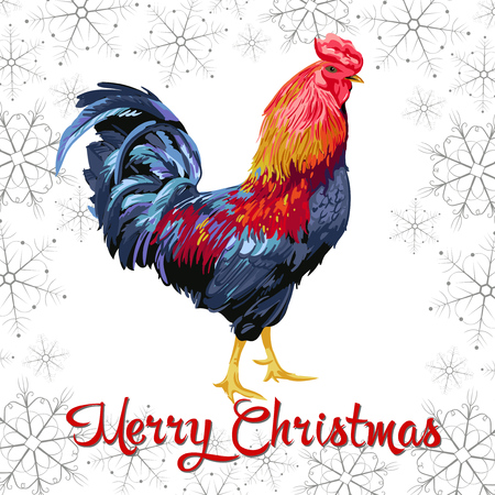 Christmas card with Chicken in white background. Иллюстрация