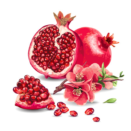 Fruit Pomegranate and pink flowers on a white background. Isolated element.