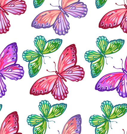 Seamless pattern of colorful butterfly on a white background.