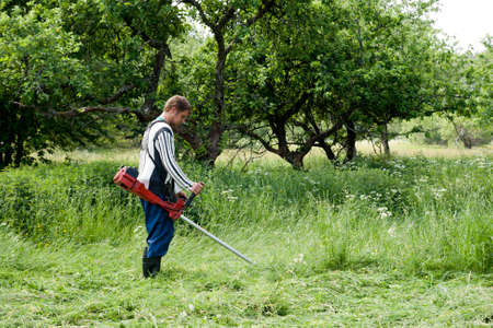 worker cutting grass in garden with the weed trimmer photo
