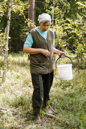 an old woman walking in the forest and looking for berries and mushrooms Stock Photo - 13101316