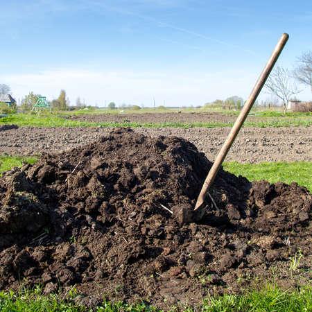 fertilizer: pile of compost near vegetable garden