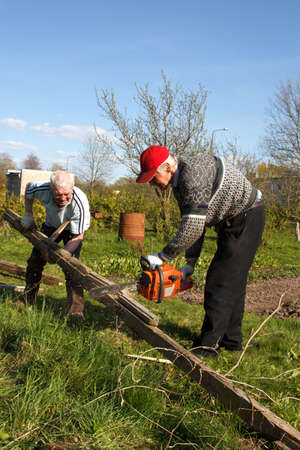 two man working in garden. destroy old building and sawing planks. photo