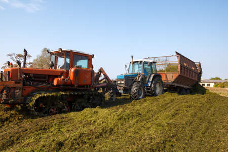 making silage stocks for animal feeding in winter. Stock Photo - 15396045