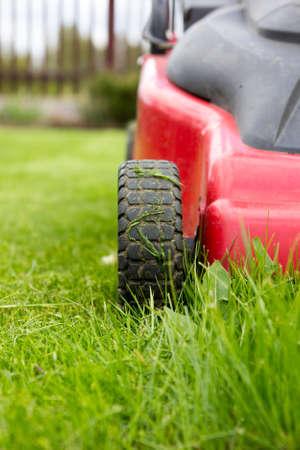 grasmaaier. Vers gemaaid gras door rode grasmaaier.