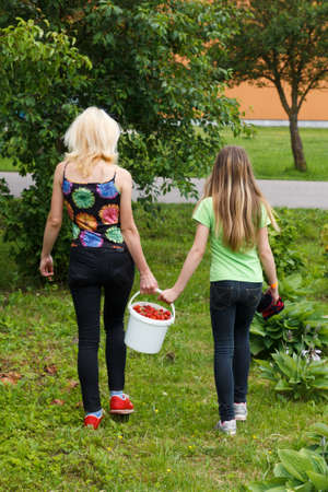 Mother and daughter walk home from the garden with a bucket full of strawberries photo
