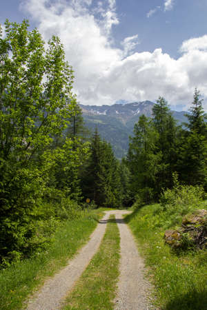 small country road in the Swiss Alps Stock Photo - 17817770