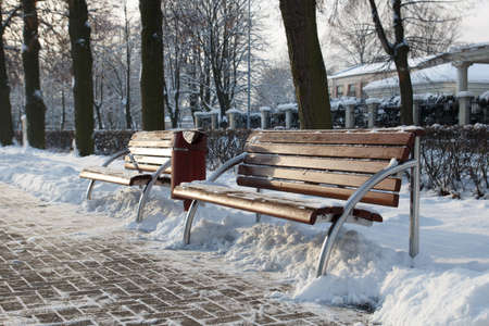 cleared: winter park with bench and cleared walkway