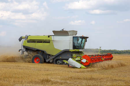 mows: The combine mows wheat in a field  Stock Photo