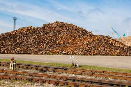 logging railroads: Un grande mucchio di tronchi di legno accatastati per l'esportazione Archivio Fotografico