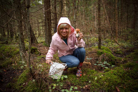 edible mushroom: A woman in a forest picking up mushrooms