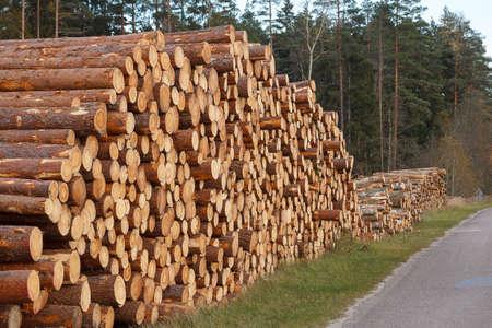 stapel logs