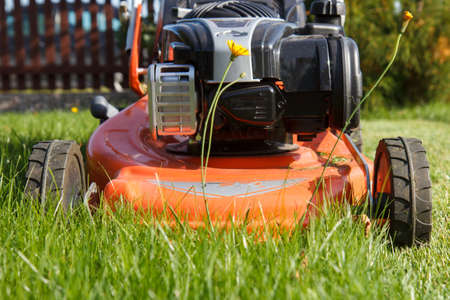 red lawn mower working closeup photo