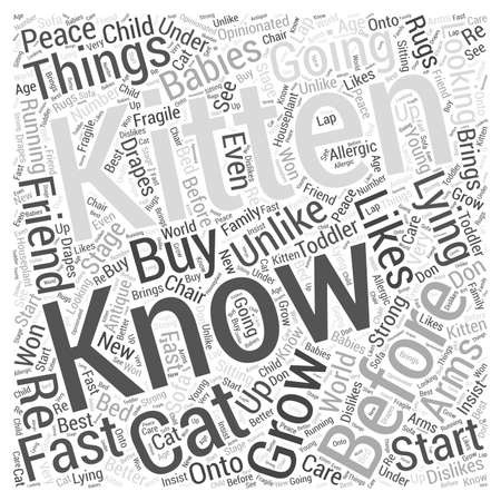 before: 7 Things You Should Know Before Going to Buy a Kitten  word cloud concept