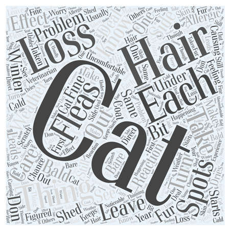 cat hair loss 24