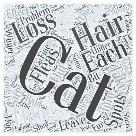bald spot: cat hair loss 24