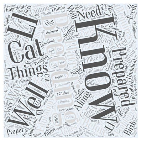 Things To Know Before Breeding Your Cat word cloud concept