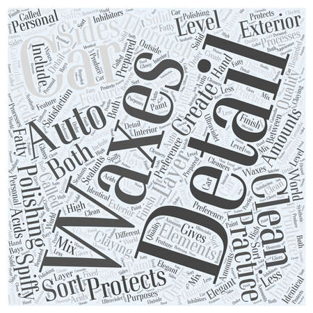 Spiffy Clean with Auto Detailing word cloud concept Vettoriali