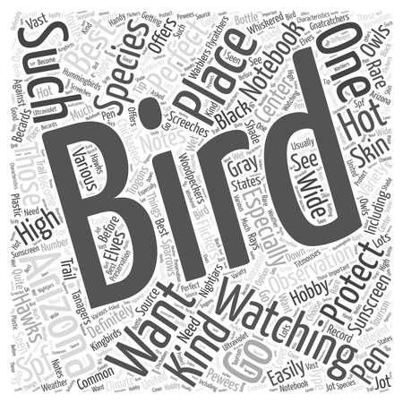 bird watching: bird watching in arizona
