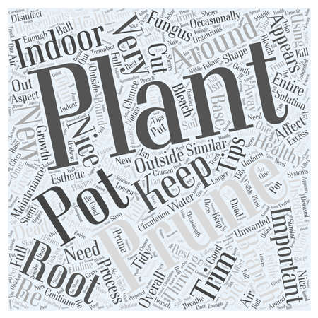 prune: Pruning and Maintenance Tips for Indoor Plants word cloud concept Illustration