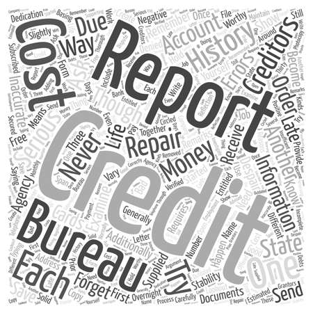 Credit Repair the Do It Yourself Way word cloud concept Vettoriali