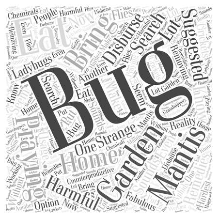Home Remedies to Disburse Bugs word cloud concept