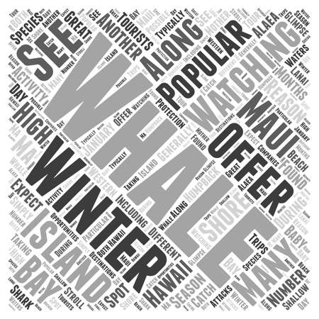 Hawaii in the Winter word cloud concept