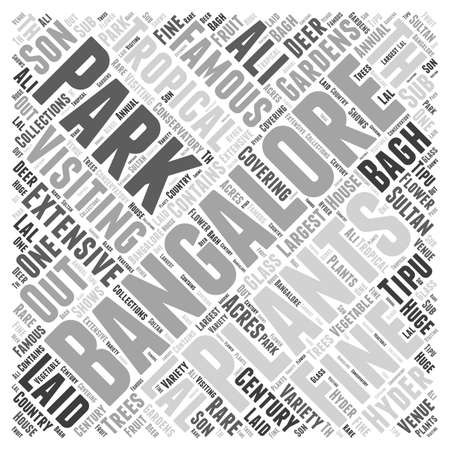 Visiting Bangalore word cloud concept