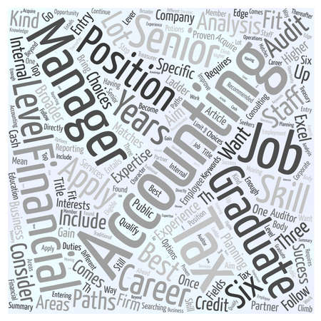 Searching For An Accounting Job word cloud concept