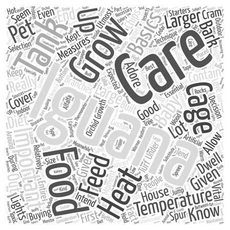 Iguana Care word cloud concept