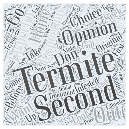 opinion: Termite Inspection Second Opinion word cloud concept